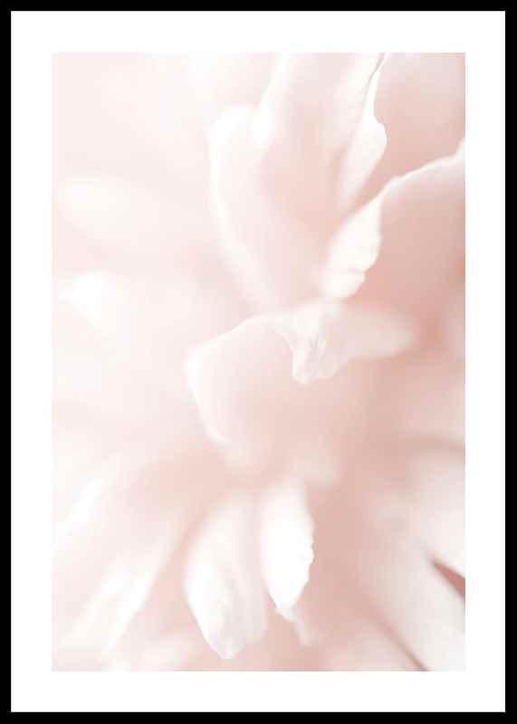 Tender Flowers No3