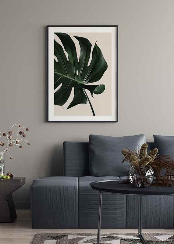 Monstera Two-4
