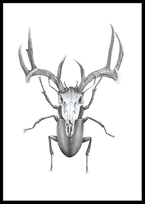 Mr stag beetle-0