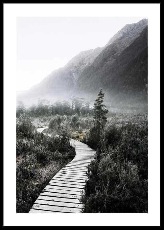 Boardwalk New Zealand-0
