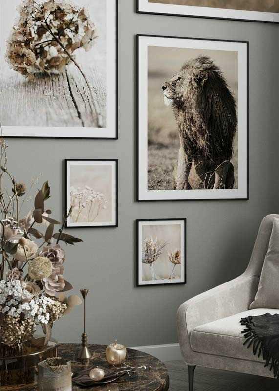 Lion In Profile-4