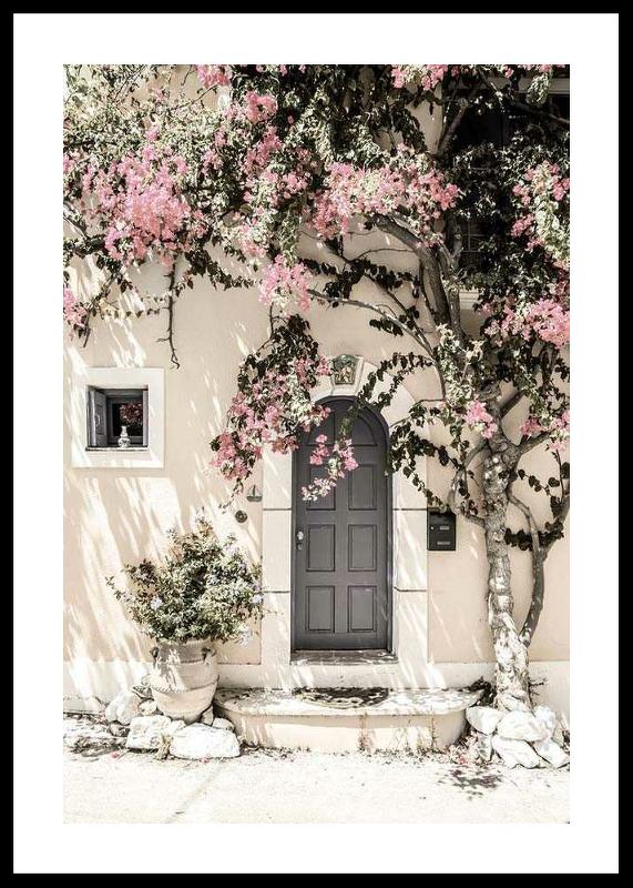 Door In Assos