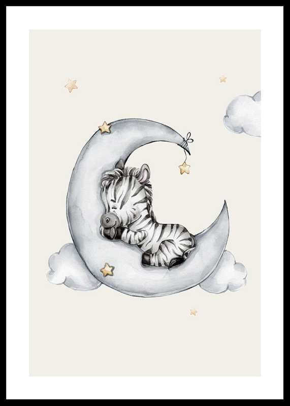 Sleeping Zebra