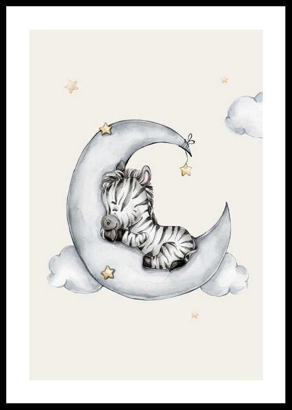 Sleeping Zebra-0