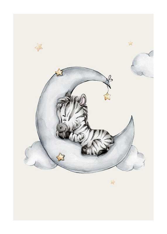 Sleeping Zebra-1