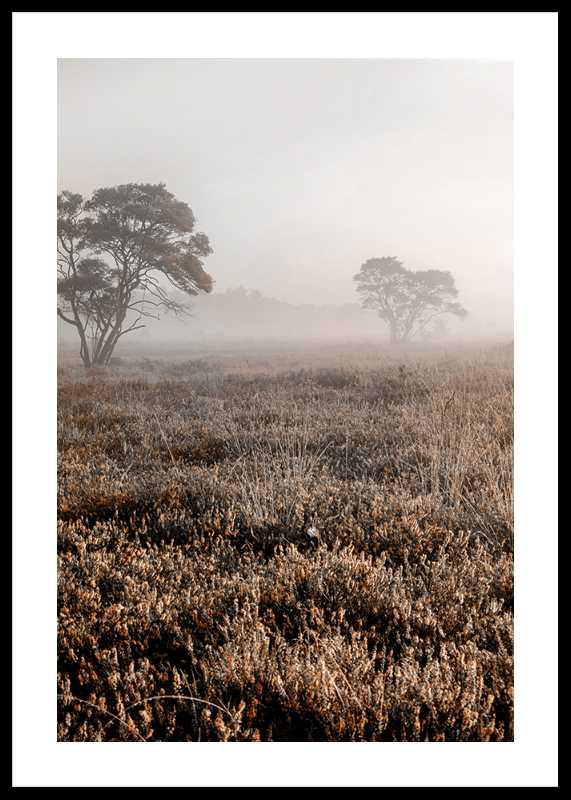 Autumn Field-0